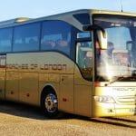 Gold Redwing coach
